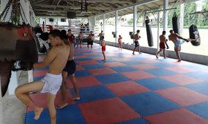 Бокс и кикбоксинг: описание и чем они отличаются