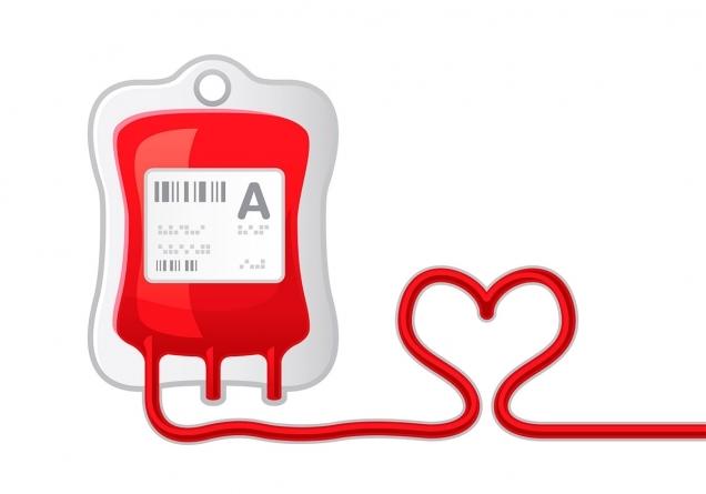 Что лучше сдавать кровь или плазму: особенности и различия