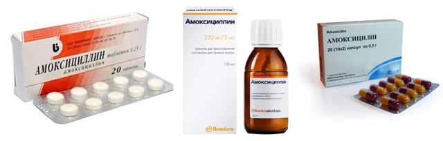 В чем разница между Ампициллином и Амоксициллином и что лучше