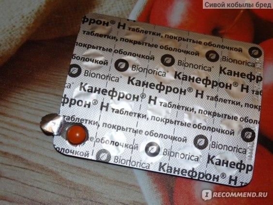 Канефрон и Цистон — сравнение препаратов и что лучше выбрать