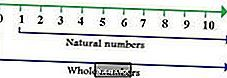 В чем разница между натуральными и целыми числами?