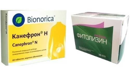 Канефрон или Фитолизин — сравнение препаратов и что лучше